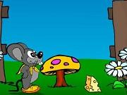 Play Cheese Hunt