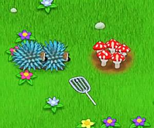 Play Mushroom Madness