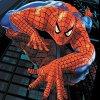 Play Spiderman memory