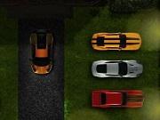 Play Sport Car Park